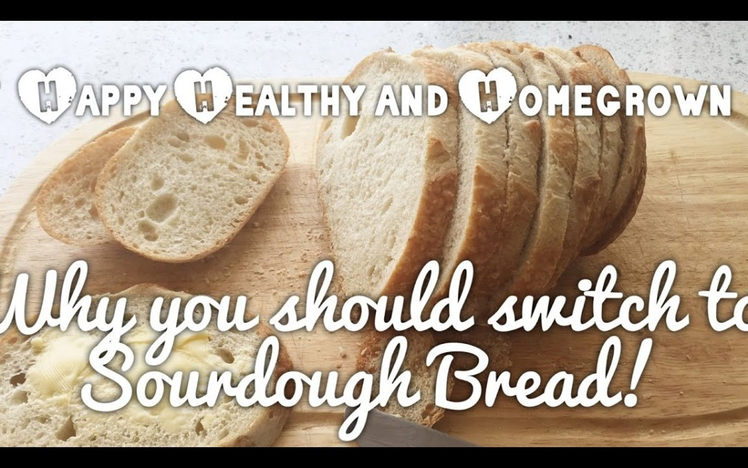 Why You Should Switch to Sourdough Bread!