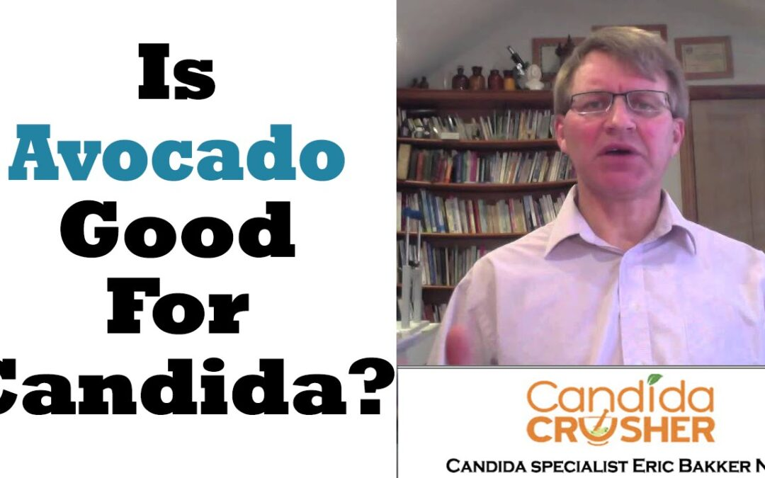 Avocado Candida Diet: Is Avocado Good For Candida?