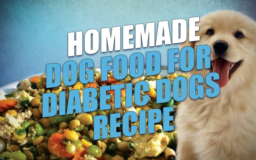 Homemade Dog Food for Diabetic Dogs Recipe (Easy to Make)